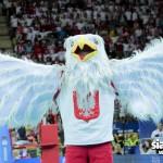 Reprezentacja: Już jutro prezentacja maskotki EUROVOLLEY POLAND 2017